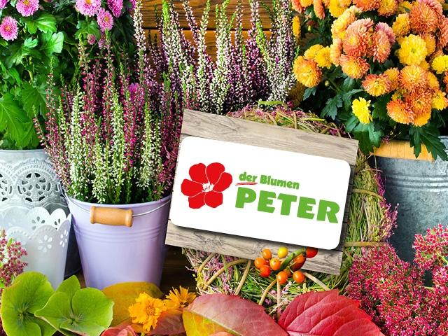 Blumen-Peter-Herbst